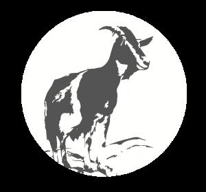 logo-test-2
