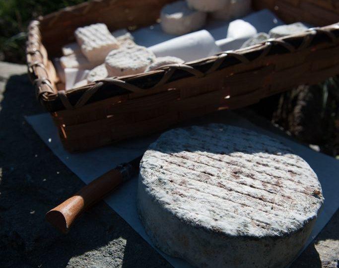 Problèmes de fromagerie et leur résolution