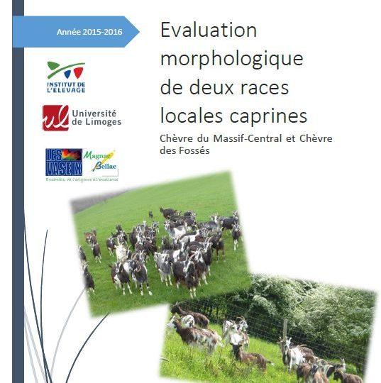 Rapport de stage : Evaluation morphologique de la chèvre M-C et de la chèvre des Fossés