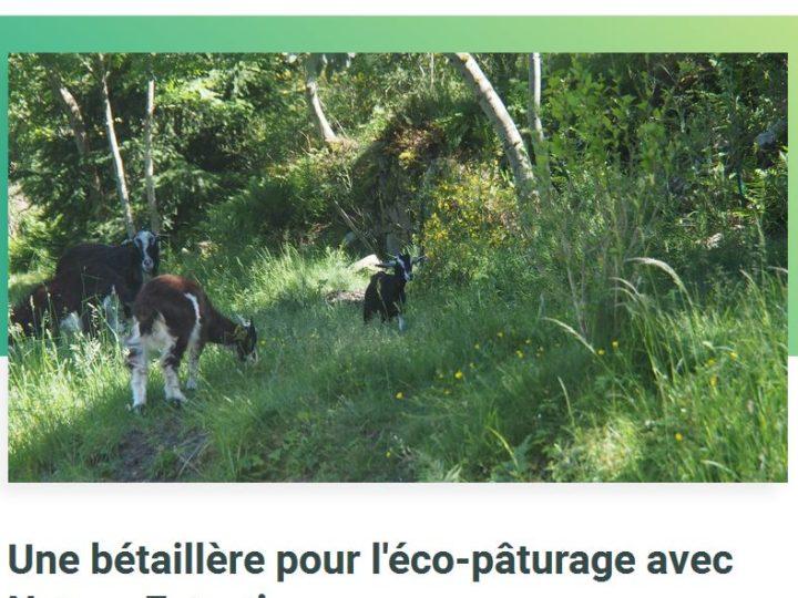 Financement participatif, Eco-pâturage Ardèche, Nature Entretien